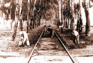 Trazado de la línea de ferrocarril que iba a la Punta del Sebo. / Foto: Autoridad Portuaria de Huelva.