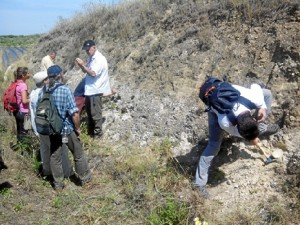 Los participantes visitaron Niebla entre otros pueblos de la provincia.