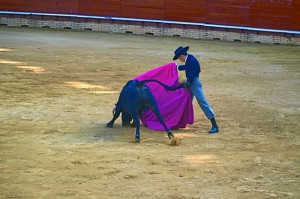El toro indultado el domingo se llamaba Viajero.