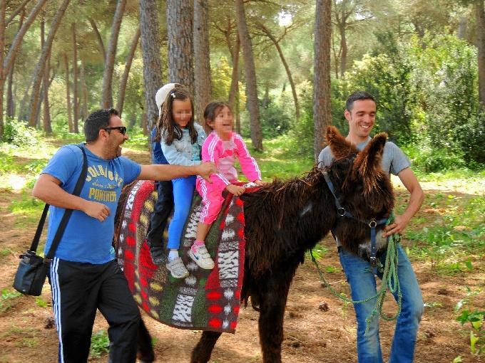Los escolares realizan actividades extraescolares en el entorno de Doñana