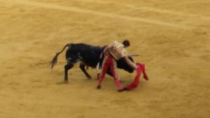 toros colombinas 2 de agosto