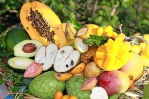 Las frutas tropicales tradicionalmente se vienen produciendo en la Costa del Sol.