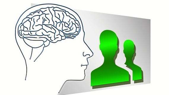 Cerebros dinámicos