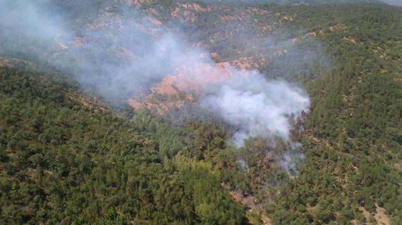 El Infoca extingue el incendio declarado en La Rábida y controla el de Valdelarco