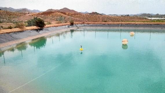 Investigadores de Huelva y Cartagena diseñan una red de riego inteligente para una gestión personalizada de los cultivos