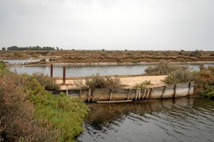 Isla de Bacuta.