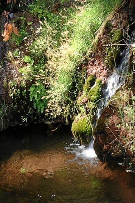 En Huelva se ha organizado una visita a la Sierra de Aracena y Picos de Aroche.