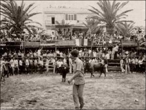 Las capeas se remontan a 1812 con la aprobación de la Constitución española, conocida como La Pepa.