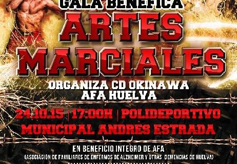 Organizada una gala solidaria de artes marciales a beneficio de AFA Huelva