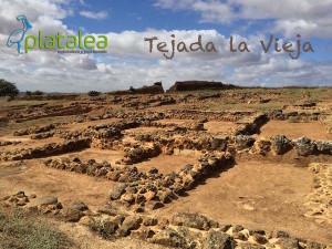Visita a Tejada la Vieja el domingo 17 de enero.