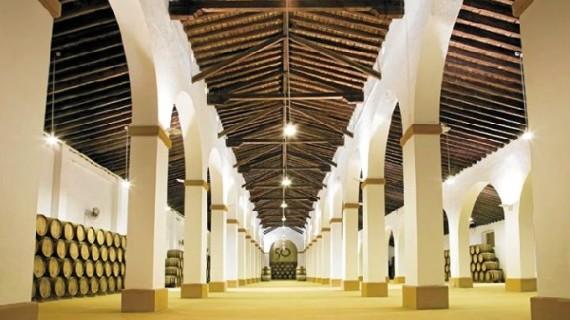 Bodegas Privilegio del Condado potencia su carácter onubense introduciendo la variedad listán de Huelva en su vino Mioro Gran Selección