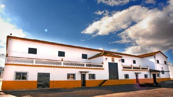 La calidad del aceite marca la campaña de la Cooperativa del Campo San Antonio Abad de Trigueros