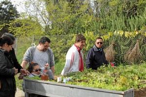 Se han realizado tareas propias de la agricultura ecológica.