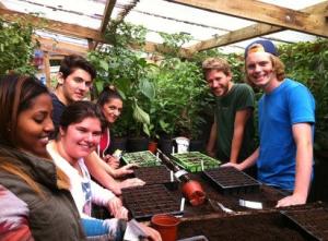 """El proyecto Mindfood desarrollado en Reino Unido es un caso """"similar"""" de éxito. / Foto: www.tomatesfelices.es"""