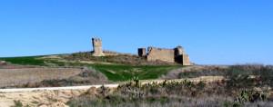 Restos de Tejada la Nueva en Escacena. / Foto: Ayuntamiento de Escacena del Campo.