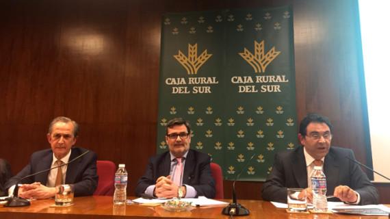 Caja Rural del Sur aumenta un 30% el patrimonio gestionado en fondos de inversión en 2015