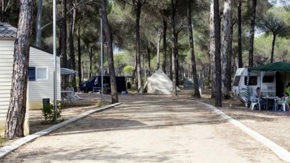 Destacan el potencial económico del ecoturismo en Doñana
