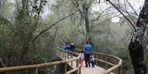 Ruta de senderismo por el Parque Nacional de Doñana.