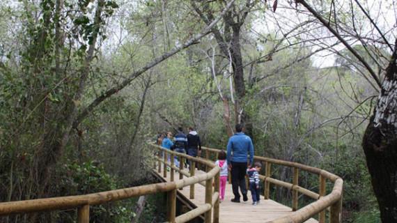 Una ruta de senderismo enseña los valores naturales de Doñana