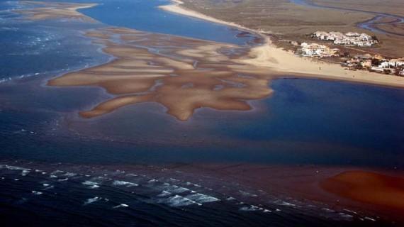 La riqueza oculta bajo el agua, un viaje fotográfico por la costa y los fondos marinos de Huelva