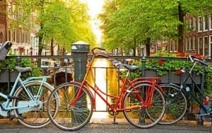 No descarta quedarse en Amsterdam para buscar trabajo allí. / Foto: www.vueling.com
