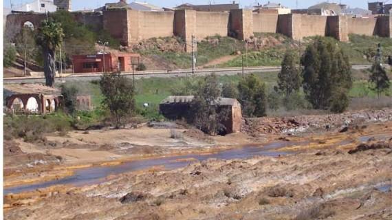 Los molinos harineros del río Tinto a su paso por Huelva, Moguer, San Juan y Niebla
