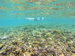 Haciendo snorkel en El Nido, Filipinas.