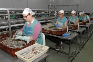 Más de 100 personas trabajan en esta empresa familiar. / Foto: José Rodríguez.