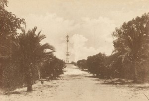 Esta imagen de 1929 muestra el lugar que antes había ocupado la palmera ya sin rastro de ella