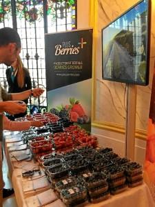 Frutos rojos para promocionar Huelva.