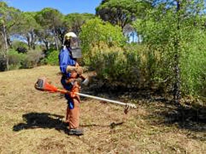 La mayoría de los trabajos que aún desarrollan los operarios está relacionada con la prevención de incendios forestales.