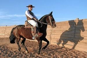 Existen muchas similitudes entre la cría de caballos en Huelva y América. / En la imagen, la cría de caballo criollo. / Foto: jornadaonline.com
