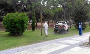 Se han intensificado los tratamientos tras la presencia masiva de mosquitos en dos focos como son El Portil y Punta Umbría.