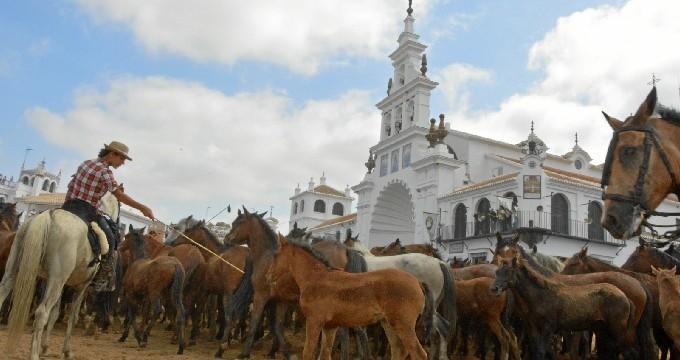 Almonte recupera la Saca de las Yeguas