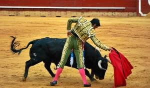El diestro Miguel Ángel Perera.  /Foto: Arizmendi.