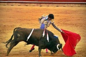 Andrés Roca Rey, lidiando un toro de Santiago Domecq.  /Foto: Arizmendi.