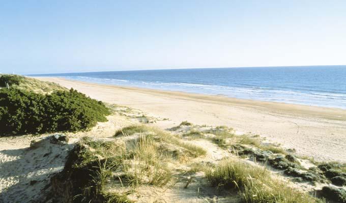 Isla Canela y Punta del Moral, entre los destinos preferidos del viajero español para este verano