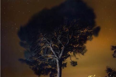 Sendero crepuscular con historias de vida y muerte en Tharsis