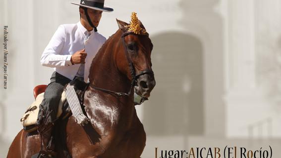 El Rocío convoca a la afición al mundo del caballo con un programa hípico en agosto