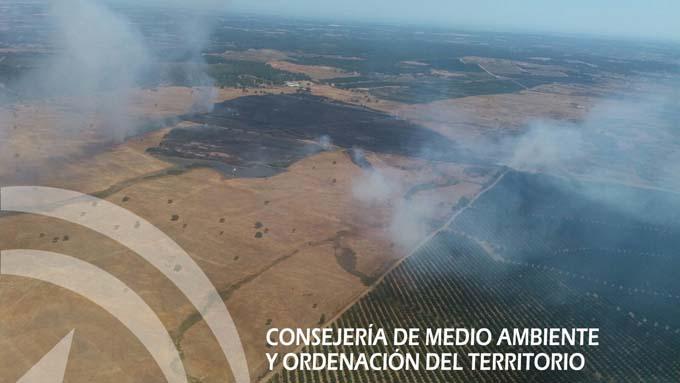 Foto de archivo. En pasado año el municipio también se vio afectado por un incendio. / Foto: Infoca.