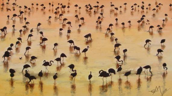 Ponen en marcha una campaña informativa sobre el Espacio Natural de Doñana