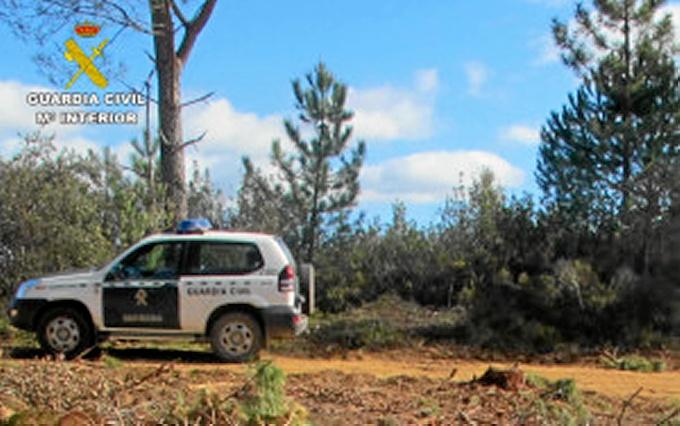 En la operación participaron varias patrullas de la Guardia Civil.