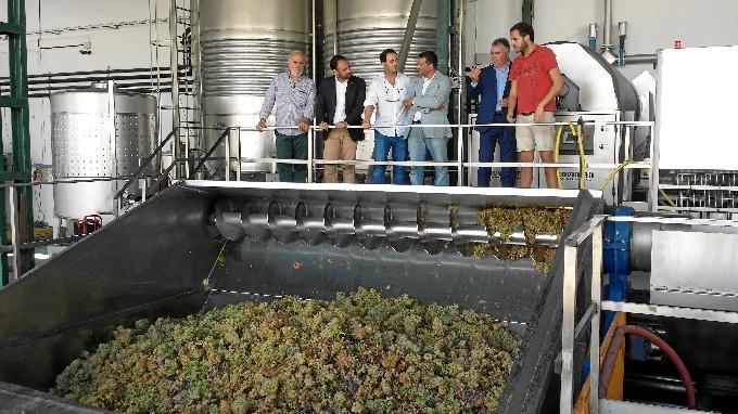 """La """"calidad máxima"""" de los vinos del Condado, una """"razón sobrada"""" para """"ganar"""" la internacionalización"""