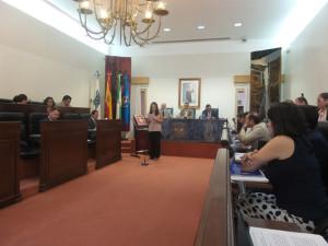 El pleno comenzaba con la lectura de una Declaración Institucional.