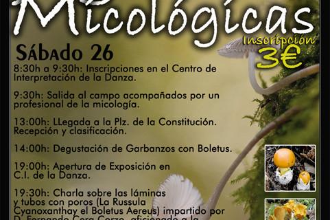 Níscalos y boletus, dos de las setas comestibles que catarán quienes acudan a las 7º Jornadas Micológicas de Villablanca