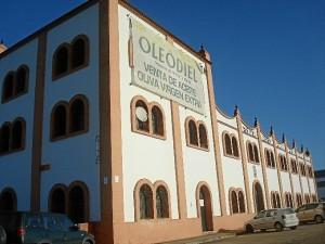 El aceite ya está a la venta en la Cooperativa Ntra. Sra. de la Oliva de Gibraleón.