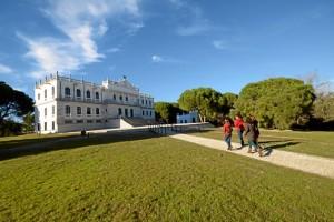 Palacio del Acebrón.
