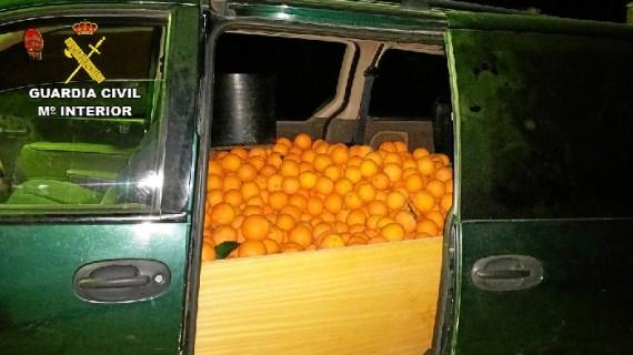 Detenidas tres personas por robar naranjas en una finca de Beas