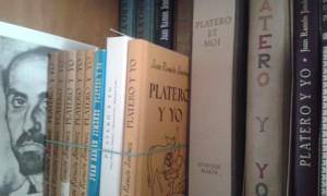 Ediciones de Platero y Yo de la biblioteca particular del periodista y bibliógrafo León Brázquez.