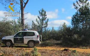 La Guardia prestaba apoyo a una montería cuando descubrieron el delito.